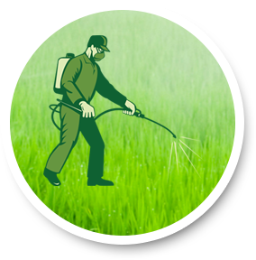Bio Pesticide Exporter
